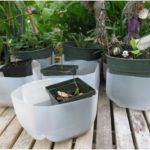 Creative Ideas For DIY Plant Containers